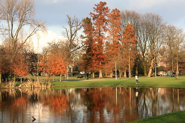 Vondelpark no  outono