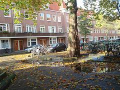 Outono holandês