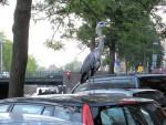 Foto do dia – Fauna de Amsterdam, Garça