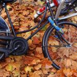 Foto do dia – Bicicleta sucumbe ao outono