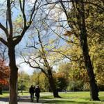Top 5 lugares pra se fotografar Amsterdam