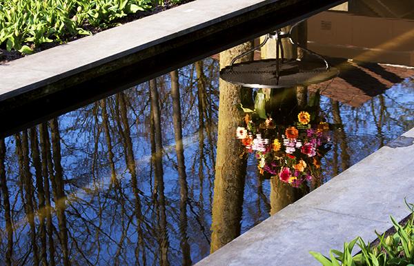 Keukenhof: parque flores Holanda vaso