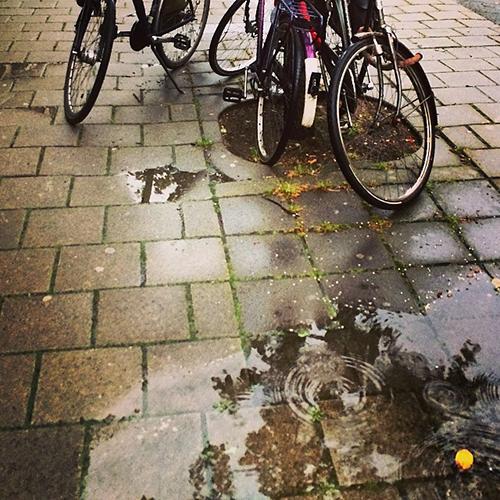 Amsterdam_chuva_bikes