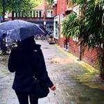6 coisas pra fazer em Amsterdam com chuva