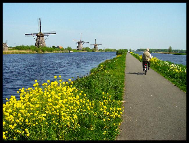 Moinhos de vento, canal e bicicleta: motivos para morar na na Holanda