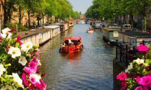 O que fazer em Amsterdam: Top 5 coisas pra fazer em Amsterdam