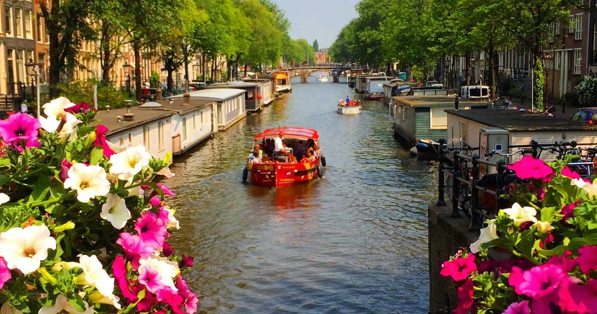 O que fazer em Amsterdam: top 5 coisas para fazer em Amsterdam