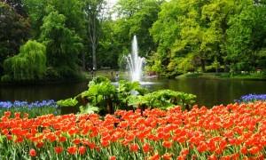 Keukenhof: Como visitar o parque das flores na Holanda (atualizado 2016)