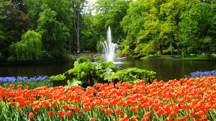 Keukenhof: tulipas na Holanda