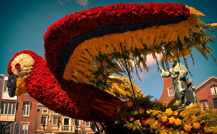 Parada das Flores em Amsterdam