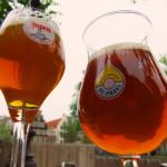 Guia da Cerveja em Amsterdam – Melhores pubs e onde comprar (Atualizado!)