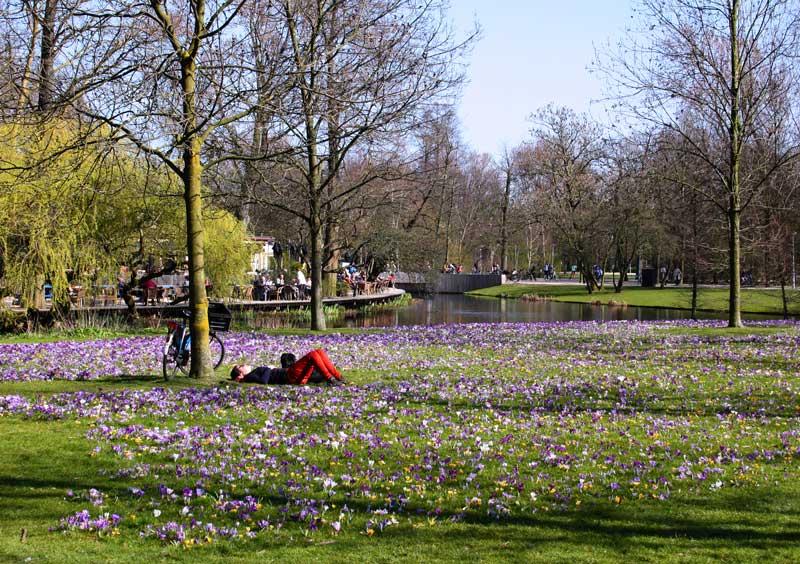 Roteiro de 3 dias para Amsterdam: curtir o Vondelpark