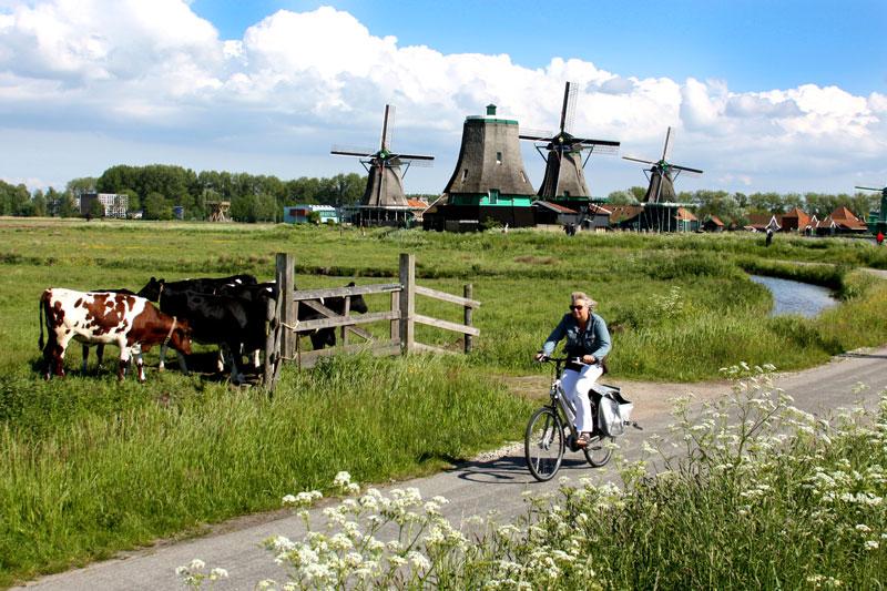 Ingressos para Amsterdam: moinhos de vento