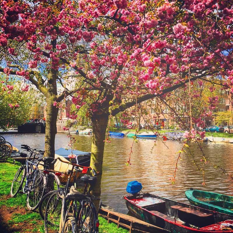 Clima em Amsterdam: primavera