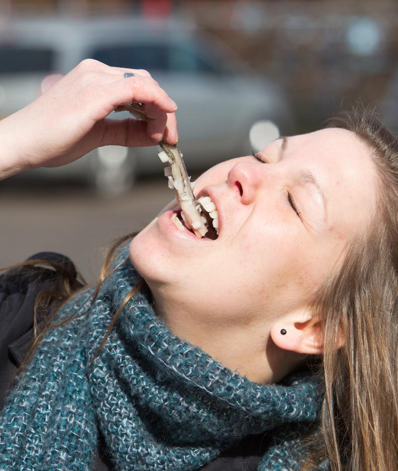 O que comer em Amsterdam: Arenque