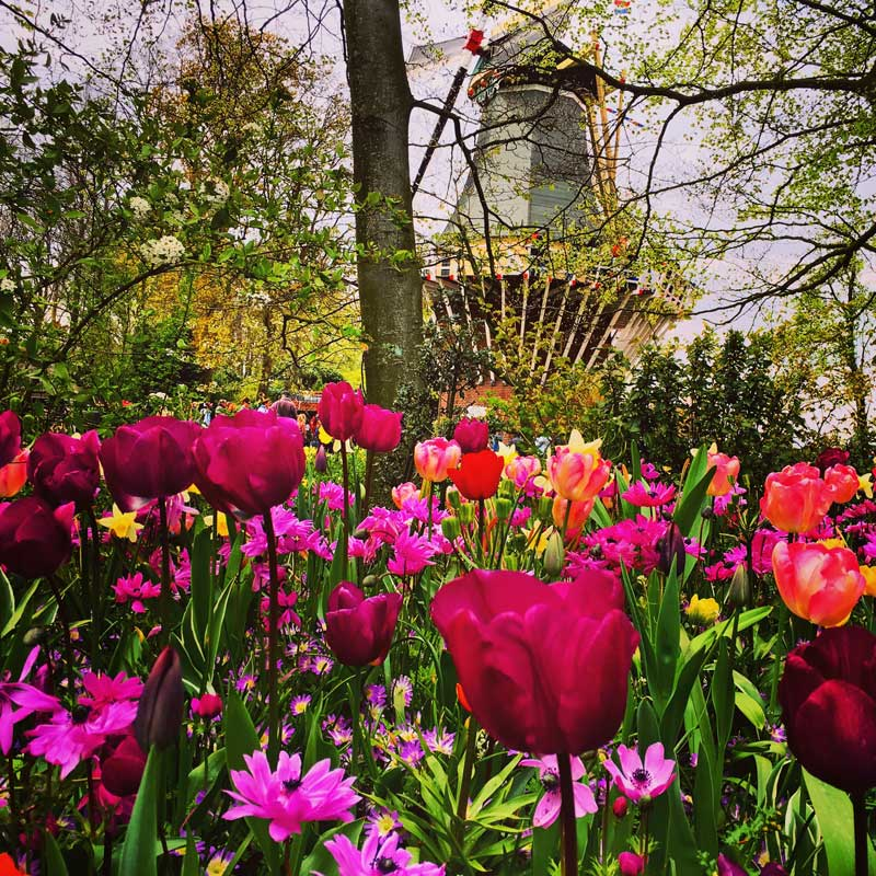 Clima na Holanda: primavera