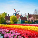 Dicas do que fazer em Amsterdam em março: uma agenda totalmente holandesa
