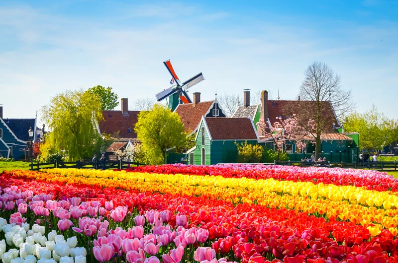 O que fazer em Amsterdam em março
