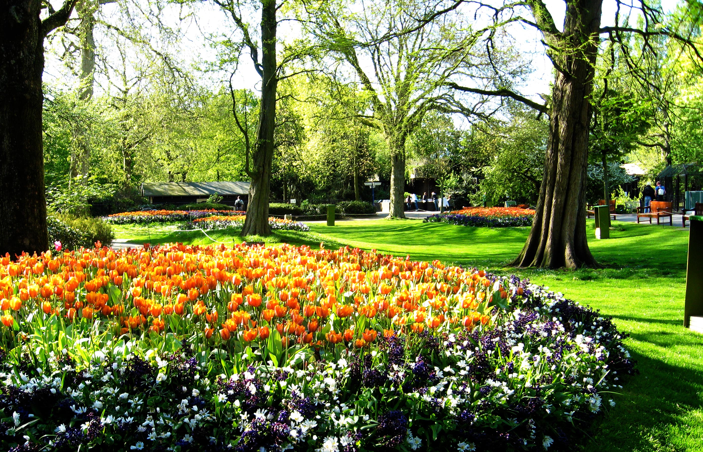Amsterdam em abril