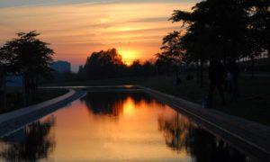 5 parques em Amsterdam que você precisa visitar (além do Vondelpark)