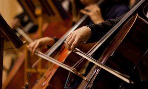 Bienal de violoncelo em Amsterdam: o poder restaurador da música